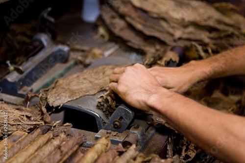 tobacco production home made