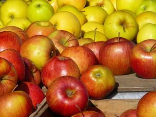 two varieties of apple