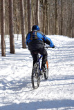 snow biker poster