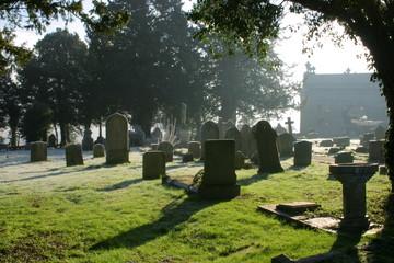atmospheric cemetery scene in contre jour
