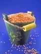 lentil pot