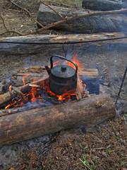 campfire tea