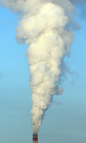 toxic smoke poster