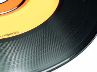 vinyl cdr1