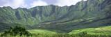 panorama - hawaii poster