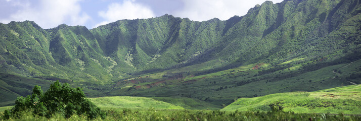 panorama - hawaii