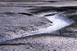 bretagne marée basse poster