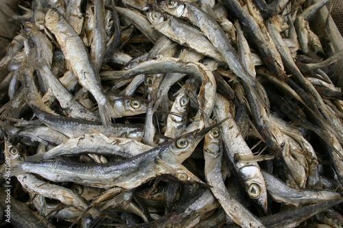 peixe salgado