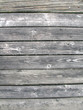 wood 1_6950