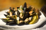 gourmet mussels poster