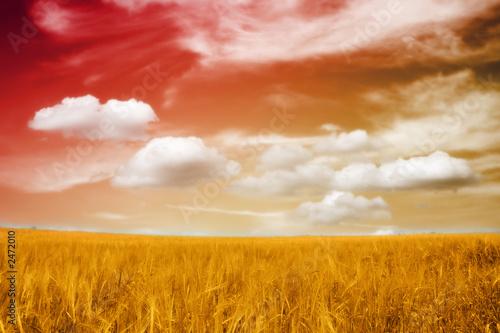 beautiful landscape in sunset - 2472010