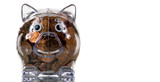clear plastic piggy bank full of pennies poster