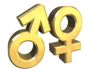 simbolo maschio femmina in oro v2