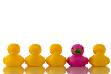 pink, purple rubber duck with yellow ducks