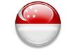 länderbutton aqua 2007: singapur