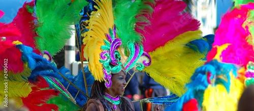 carnaval - 2490402