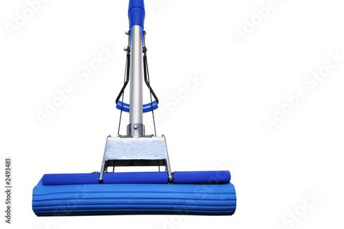 dark blue mop