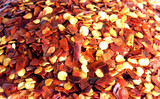 crushed red chilli pepper. background. poster