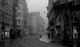 Fototapete Regen - Mohrübe - Straße
