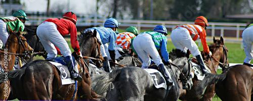 Papiers peints Equestre dans la course