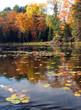 sunny day on freeland lake