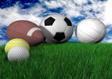 sports balls on grass - horizontal poster