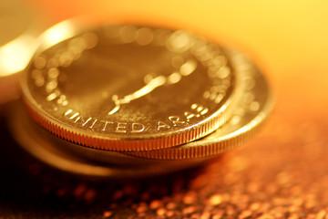 united arab emirates currency