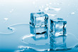 canvas print picture - blue ice cubes