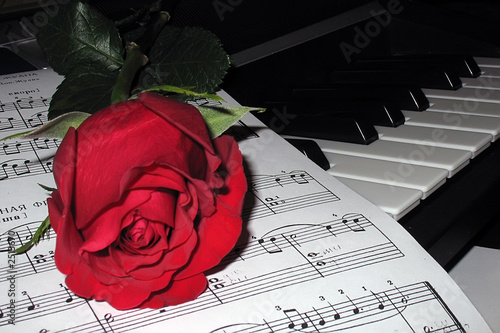 rose on piano music