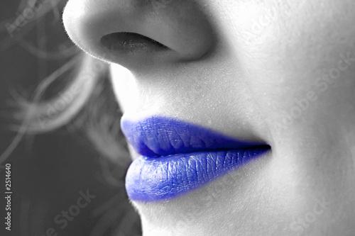 papier peint sourire de femme bouche bleue bouche. Black Bedroom Furniture Sets. Home Design Ideas