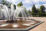 peterhof fountains-2 poster