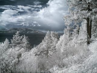 infrared landscape_009.jpg