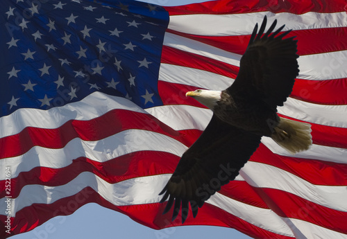 Foto op Canvas Eagle old glory and bald eagle