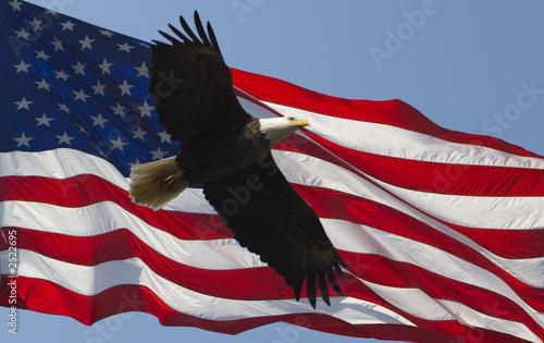 Deurstickers Eagle american symbols