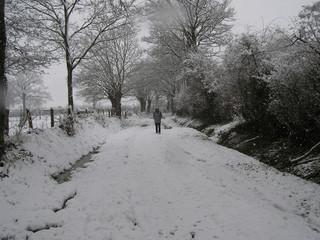 0609- promenade sous la neige