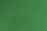 close-up of green leather texture poster
