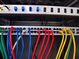 networking patch panel and cables poster