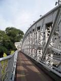 anderson bridge walkway @ singapore poster