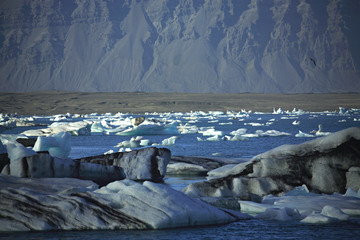a scattering of icebergs