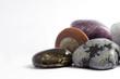 composizione di minerali e fossili
