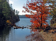 sunny day on freeland lake 2