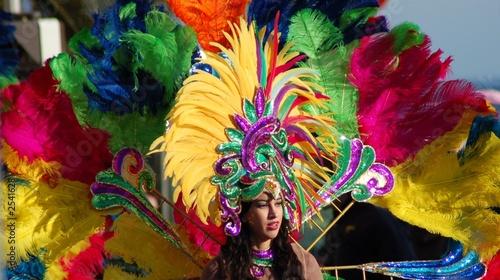 pesonnage de carnaval deguisé - 2541628