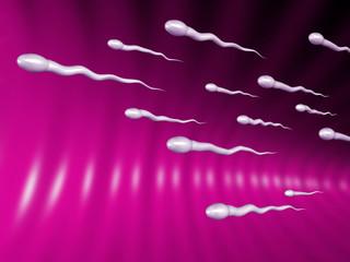 sperms
