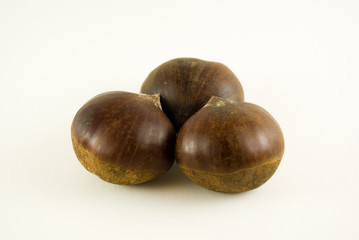 californian chestnuts