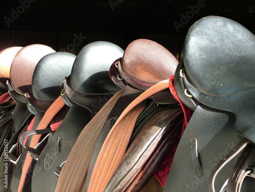 saddles lined up on the fence - 2552637