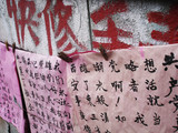 oriental paper hanging to dry poster