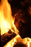 campfire - wood burning poster
