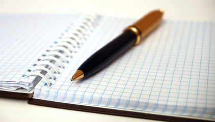 notebook in check with pen ii