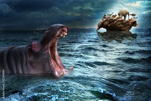 Fototapeta arka - powódź - Dziki Ssak