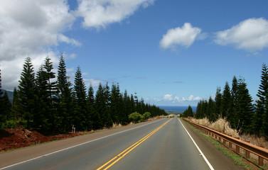 road to northshore